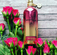 .MONTALE THE NEW ROSE
